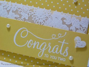 Something Lacy embossed vellum