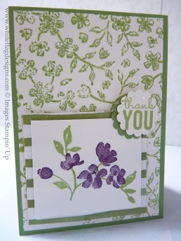 Wild Wasabi Stamped Background